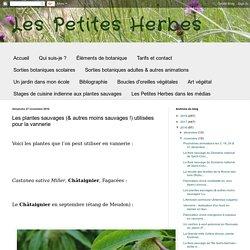 Les plantes sauvages (& autres moins sauvages !) utilisées pour la vannerie