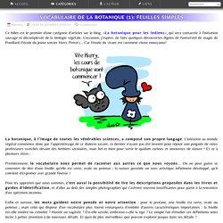 Sauvages du Poitou - Le vocabulaire de la botanique: décrire les feuilles (1)