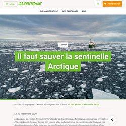 Il faut sauver la sentinelle Arctique