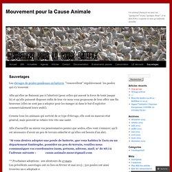 Mouvement pour la Cause Animale