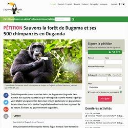 Sauvons la forêt de Bugoma et ses 500chimpanzés en Ouganda