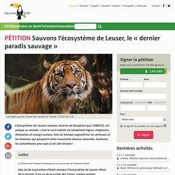 Sauvons l'écosystème de Leuser, le «dernier paradis sauvage »
