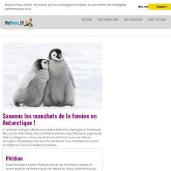 Sauvons les manchots de la famine en Antarctique !