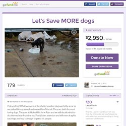 Let's Save MORE dogs by Lauren Meekins Anton