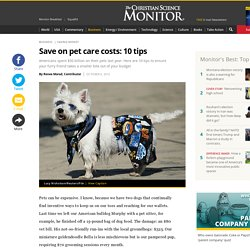 Save on pet care costs: 10 tips
