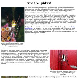 Save the Spiders!