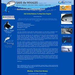 Save The Whales - Action Alert