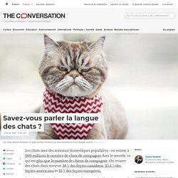THECONVERSATION 14/02/20 Savez-vous parler la langue des chats?
