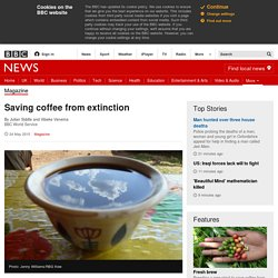 Saving coffee from extinction