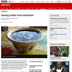 Saving coffee from extinction - BBC News