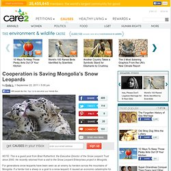 Saving Mongolia's Snow Leopards