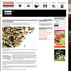 Saving Seeds - Urban Farm Online