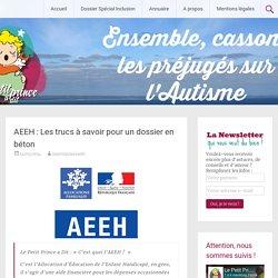 AEEH : Les trucs à savoir pour un dossier en béton - Le Petit Prince a dit : un site pour l'Autisme