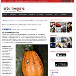 Savoir plus: Les principaux acteurs du cacao dans le monde.