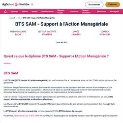 Tout savoir sur le BTS Support à l'Action Managériale (SAM)