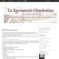 Soda DIY (Limonade maison) - La Savonnerie Clandestine