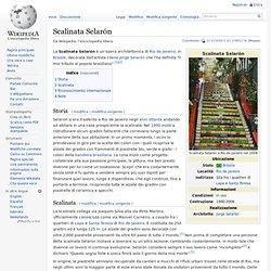 Scalinata Selarón