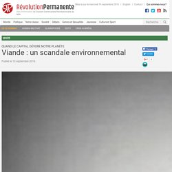 Viande : un scandale environnemental