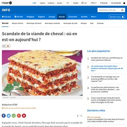 RTBF 29/10/14 Scandale de la viande de cheval : où en est-on aujourd'hui ?