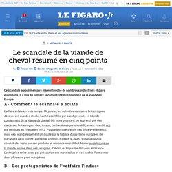 France : Le scandale de la viande de cheval résumée en cinq points