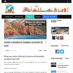 Visiter la Réserve de Scandola au départ de Calvi