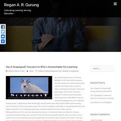 You A Scapegoat? Answers to Who's Accountable For Learning – Regan A. R. Gurung