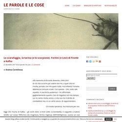 Lo scarafaggio, la tarma (e lo scorpione). Fortini (e Levi) di fronte a Kafka — Le parole e le cose