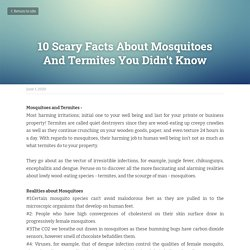 10 Scary Facts About Mosquitoes And Termites You Didn't Know
