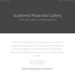 Scattered Polaroids Gallery
