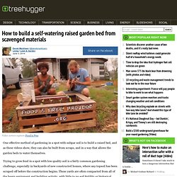 How to build a self-watering raised garden bed from scavenged materials