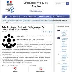 """Arts du cirque : Scénario Pédagogique """"un caillou dans la chaussure"""""""