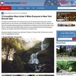 12 Scenic Hikes In New York Under 5 Miles