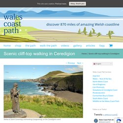 Scenic cliff-top walking in Ceredigion - Wales Coast Path