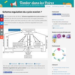 Schema regulation du cycle ovarien
