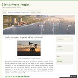 Quel avenir pour le gaz de schiste en France?