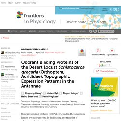 FRONT. PHYSIOL 17/04/18 Odorant Binding Proteins of the Desert Locust Schistocerca gregaria (Orthoptera, Acrididae): Topographic Expression Patterns in the Antennae