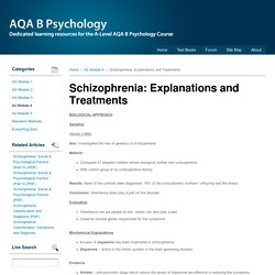 Schizophrenia: Explanations and Treatments