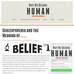 Schizophrenia and the Meaning of . . . . - Why We Became Human