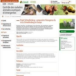 CIRAD - projet de recherche 2012-2013 Projet Schmallenberg : comprendre l'émergence du virus Schmallenberg en Europe