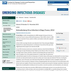 CDC EID - NOV 2013 - Au sommaire: Schmallenberg Virus Infection in Dogs, France, 2012