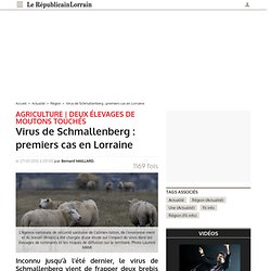 REPUBLICAIN LORRAIN 27/01/12 Virus de Schmallenberg : premiers cas en Lorraine