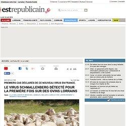 EST REPUBLICAIN 26/01/12 Premiers cas déclarés de ce nouveau virus en France. Le virus Schmallenberg détecté pour la première fo