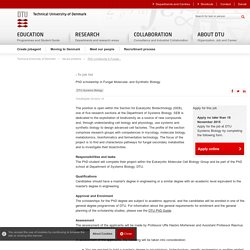 PhD scholarship in Fungal Molecular- and Synthetic Biology