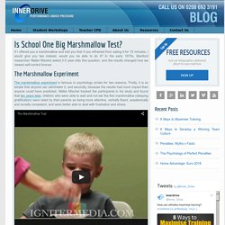 Is School One Big Marshmallow Test? - Release Your Inner Drive