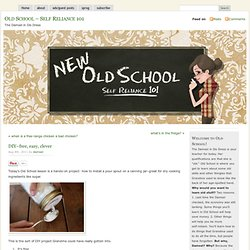 Old School – Self Reliance 101 » Blog Archive » DIY–free, easy, clever