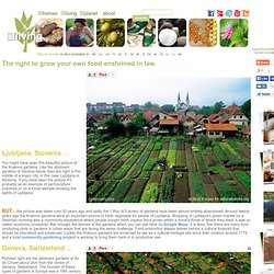 The Schreber Movement: Grow your own food