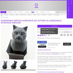 Download free STL file Schrodinky! British Shorthair Cat Sitting In A Box(single extrusion version)
