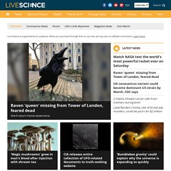 Science News – Science Articles and Current Events | LiveScience