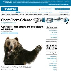 Short Sharp Science: Courgettes, judo throws and bear attacks on humans