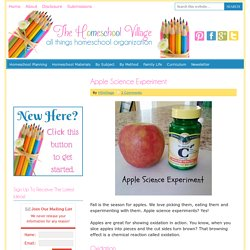 Apple Science Experiment - The Homeschool Village